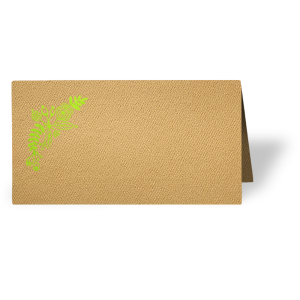 Taco 'Bout A Place Card