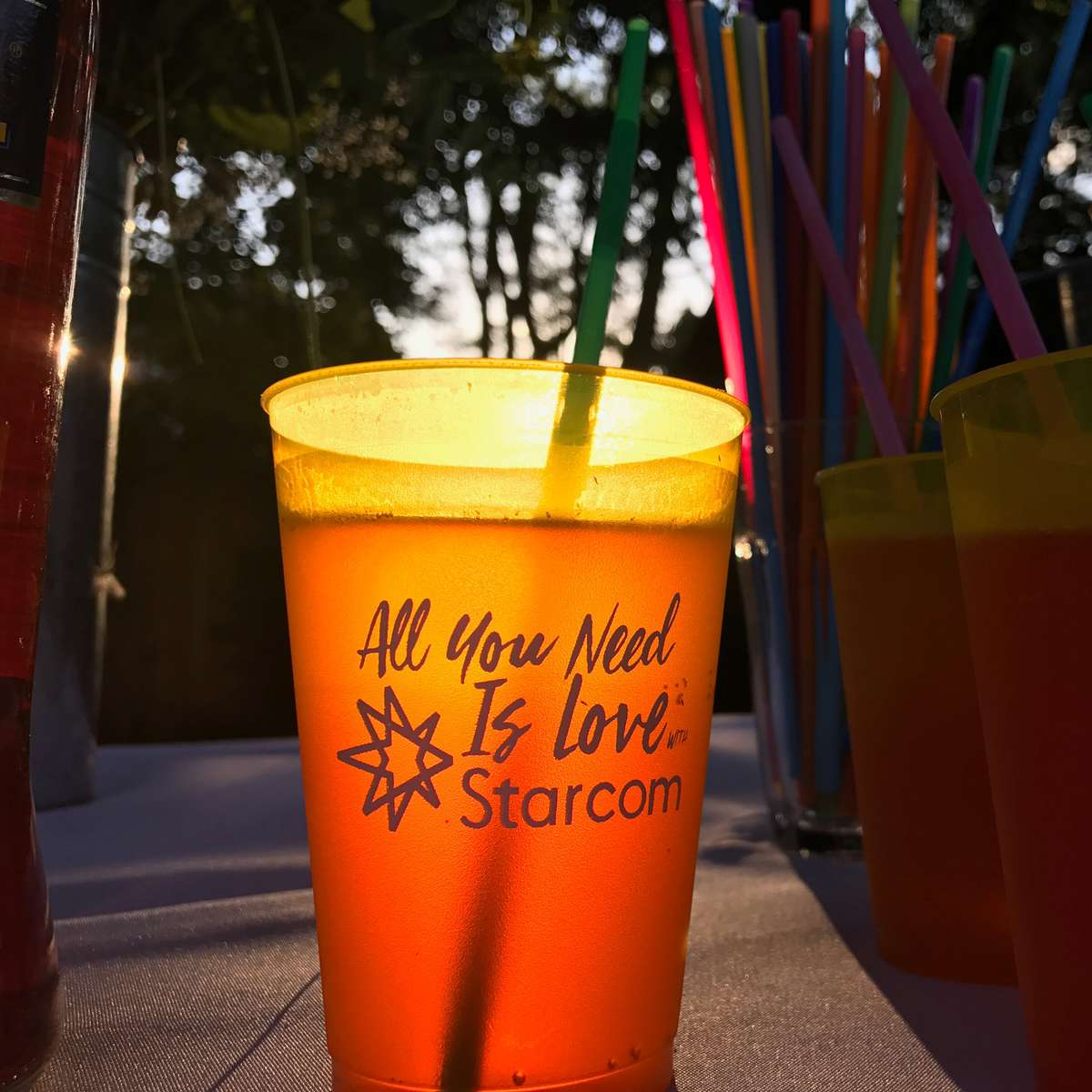 custom plastic cups for parties and personalized party favors
